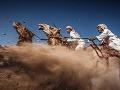 Camel Ardah - Ťaví