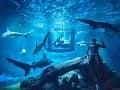 Parížske akvárium