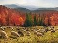 Malebná scenéria slovenských hôr