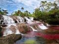 Rieka Caño Cristales