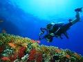 Potápači budú miestnymi podmorskými
