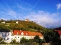 Vinice v okolí Naumburg