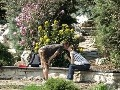 Arboretum Mlyňany - apríl
