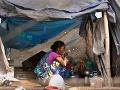 Indická handrárka je ryžu