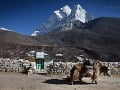 Nepál