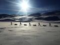 Foto: Facebook / Antarctica