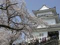 Návštevníci si užívajú kvitnúce