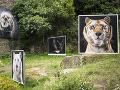 Open-air galéria v Badene