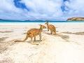 Nezabudnuteľná Austrália & Oceánia