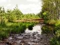 Soumarské rašelinisko, Česká republika