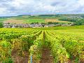 Región Champagne, Francúzsko