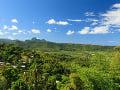 Dažďový prales, Ostrov Sv.