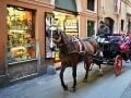 Kôň ťahá botticellu, tradičný