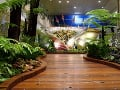Letisko Jewel Changi Airport