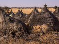 Dedina Gozmime v Čade