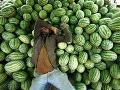 Predajca spí na melónoch