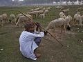 Indický pastier sa usmieva