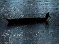Muž chytá ryby na