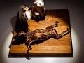 Múzeum odporného jedla