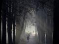 Na snímke ľudia sa prechádzajú v rannej hmle v parku v teplom počasí v bieloruskom Minsku.