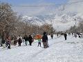 Kvéta v Balučistáne