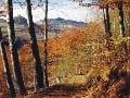 Arborétum Kysihýbel