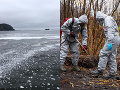 Ekologická katastrofa na Kamčatke