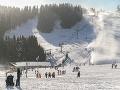 Lyžovanie v lyžiarskom stredisko