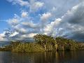 Rezervácia Cuyabeno