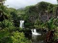 V srdci dažďových pralesov