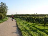 Cyklovýlet, Dolné Rakúsko