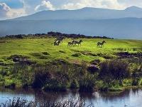 Kráter Ngorongoro sa považuje
