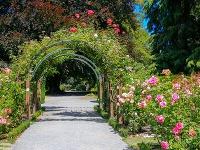 Päť najčarovnejších botanických záhrad: