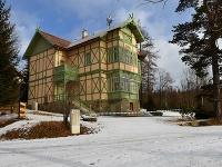 Vila Ilona v Starom
