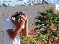 Ďalšia nepríjemná správa pre turistov: Na Sardíniu zaútočili kobylky