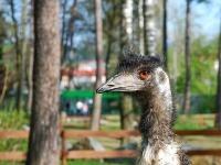 VÍKEND Sezóna v Zoo