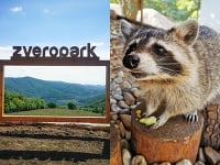 Žarnovický zveropark  -