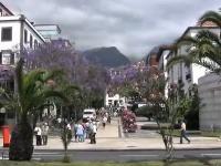 NA CESTÁCH Madeira -