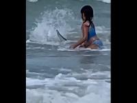 Šesťročné dievčatko naháňal žralok: