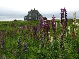 ostrov princa Eduarda, Kanada