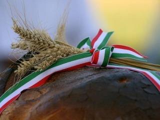 Gastronómia Maďarska