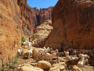 Plošiny Ennedi v Čade