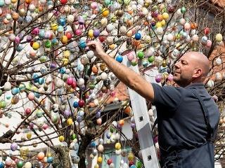 Muž zdobí strom veľkonočnými