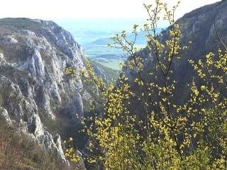 Zádielska tiesňava, Slovenský kras