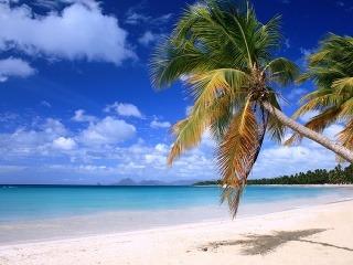 Ostrov Martinik