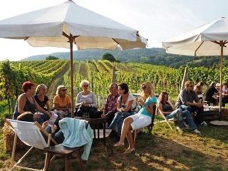 Najdlhší vínny bar: V