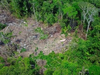 Úžasné zábery z amazonskej