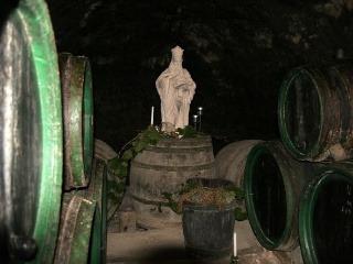 VÝLET Tokajská vínna cesta