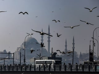 Čajky letia nad mostom