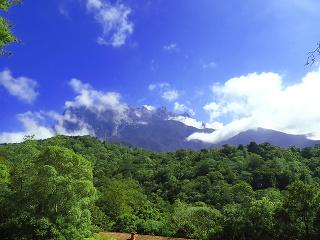 Prales v Borneu